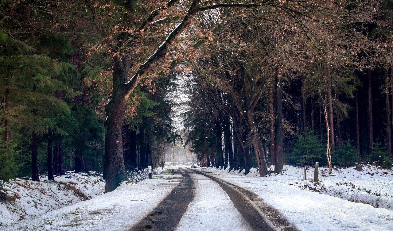 Veilig de weg op in de winter